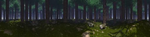 """Der Sky """"forest"""""""